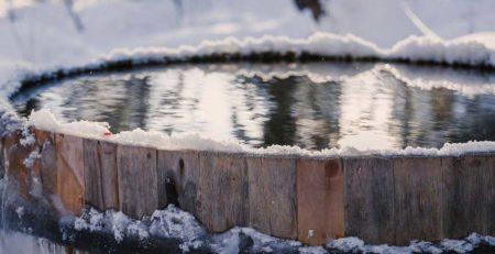 pic palju talvella
